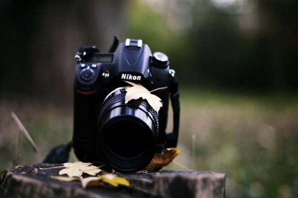 Hojas otoñales sobre una cámara de fotos Nikon
