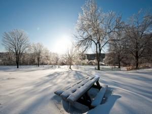 Mesa y campo cubiertos de nieve