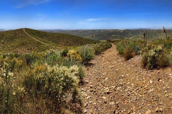 Camino pedregoso y solitario bajo el cielo azul