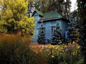 Postal: Casa en el bosque
