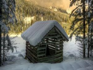 Postal: Pequeña cabaña de madera en un bosque nevado