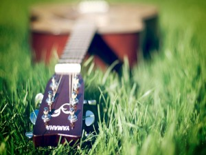 Guitarra Yamaha sobre la hierba