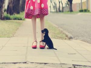 Perrito a los pies de su amiga