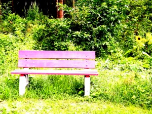 Banco solitario en un parque