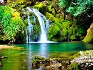 Cascada sobre las rocas