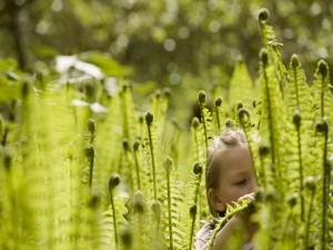 Postal: Una niña entre grandes plantas