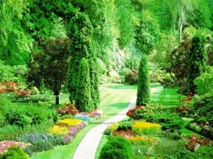 Un cuidado jardín