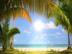 Brilla el sol en la playa