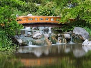 Postal: Un bonito puente de madera sobre el agua