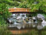 Un bonito puente de madera sobre el agua