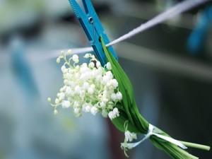 Ramillete de flores colgado de una pinza