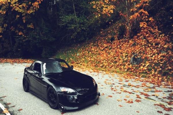 Deportivo negro en una carretera cubierta de hojas otoñales