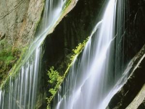 Postal: Agua cayendo sobre la gran pared de roca