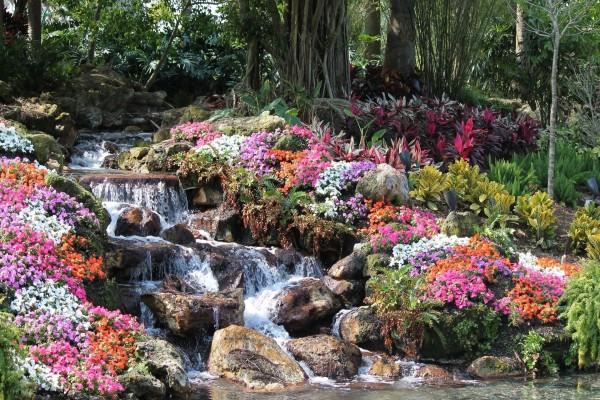 Flores y plantas junto a una cascada