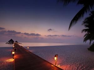 Camino iluminado sobre la playa