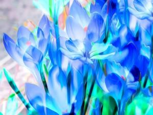 Postal: Flores azules en 3D
