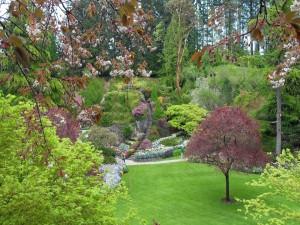 Postal: Escaleras en un hermoso jardín
