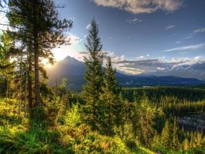 Postal: Sol sobre las montañas