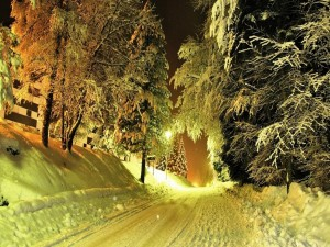 Camino nevado en la noche