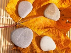 Piedras sobre una hoja seca