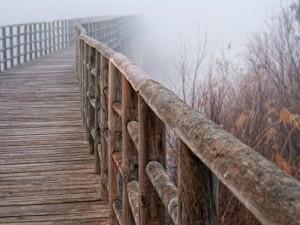 Niebla en el puente de madera