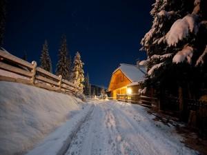 Postal: Camino cubierto de nieve