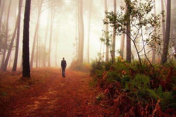 Hombre con su perro caminando por el bosque