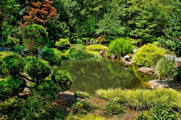 Un bello jardín