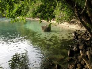 Postal: Rocas y árboles en una playa