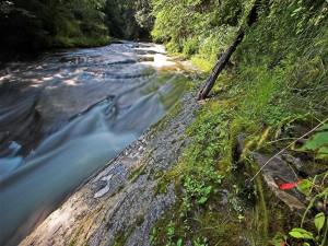 Un estrecho y caudaloso río