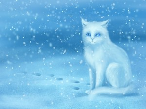 Postal: Un gato blanco en la nieve