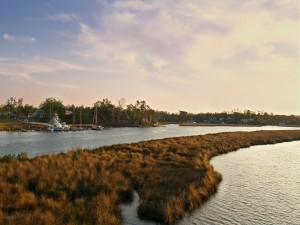 Postal: Barcos en una orilla