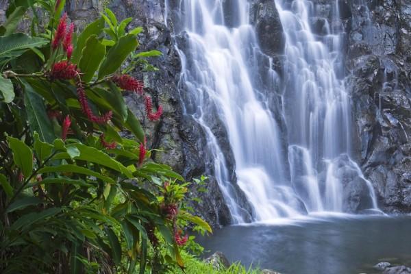 Cascada sobre las rocas húmedas