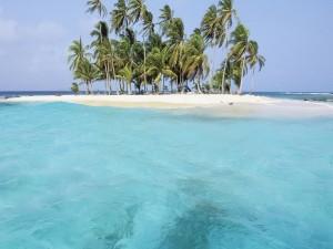Viento en la isla de las palmeras