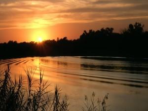 Postal: El sol del atardecer iluminando el agua