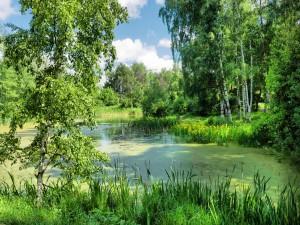 Río verde