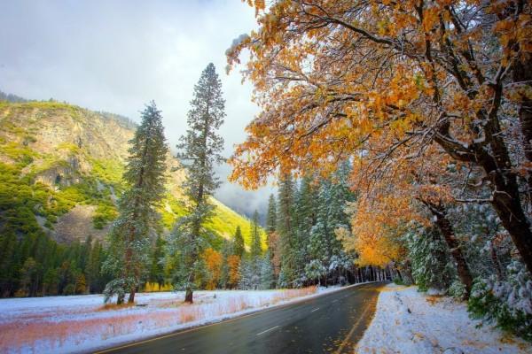 Nieve y hojas otoñales a ambos lados de una carretera