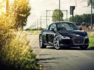 Un hermoso Audi negro