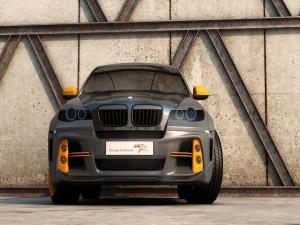 Postal: Un BMW X6 Met-R