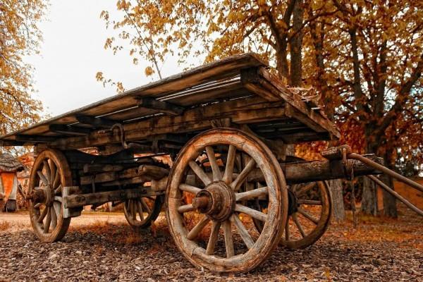 Un carro viejo junto a árboles otoñales