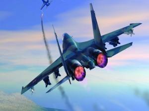Dos aviones de combate en vuelo