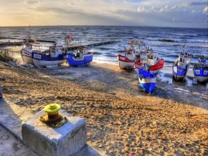 Postal: Flota de barcos en la playa