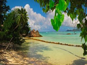 Hilera de piedras en la orilla de una playa