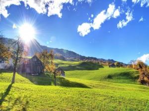 Cálida luz del sol en otoño