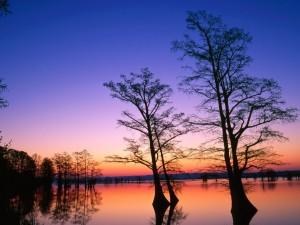 Postal: Quietud en el crepúsculo