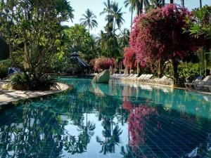Postal: Increíble piscina