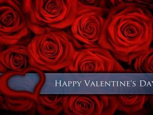 Rosas rojas y Feliz día de San Valentín