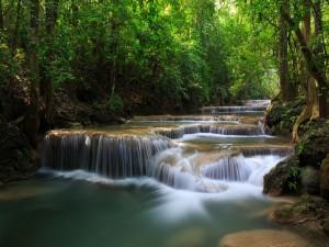 Pequeñas cascadas en el caudal de un río