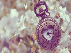 Bonito reloj sobre las flores blancas