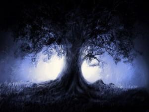Postal: Luz tras el gran árbol
